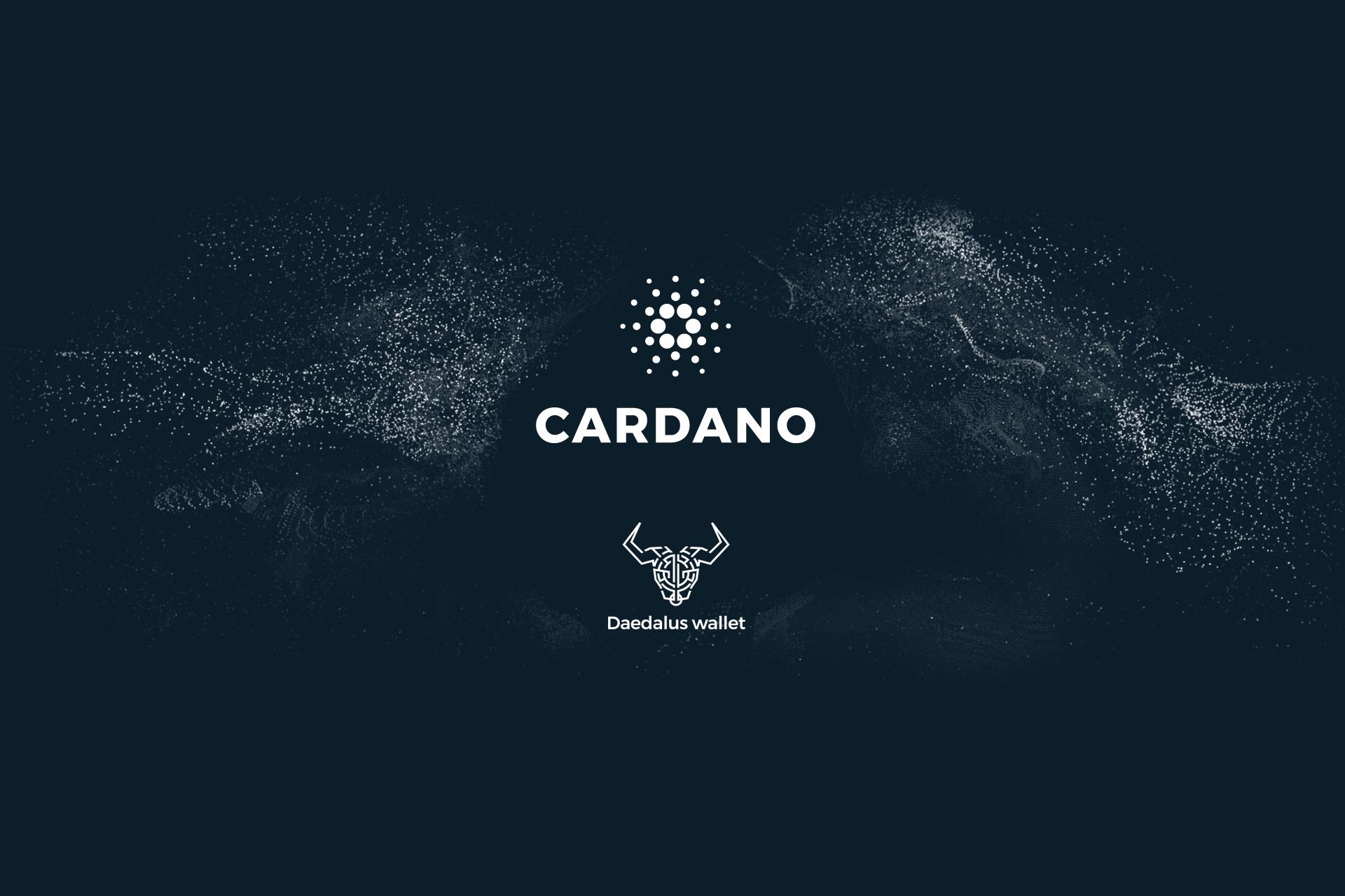 Характеристика кошелька Cardano