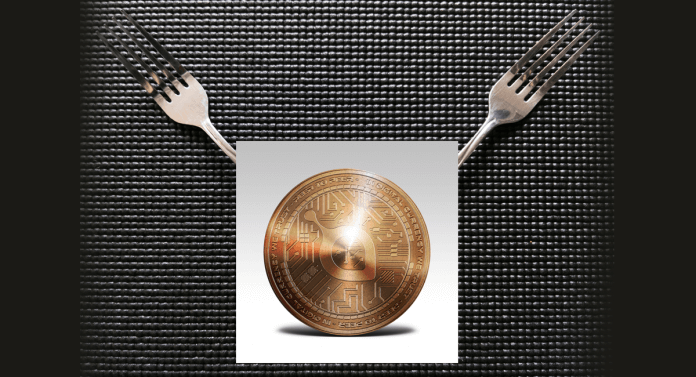 Перспективы блокчейна Siacoin