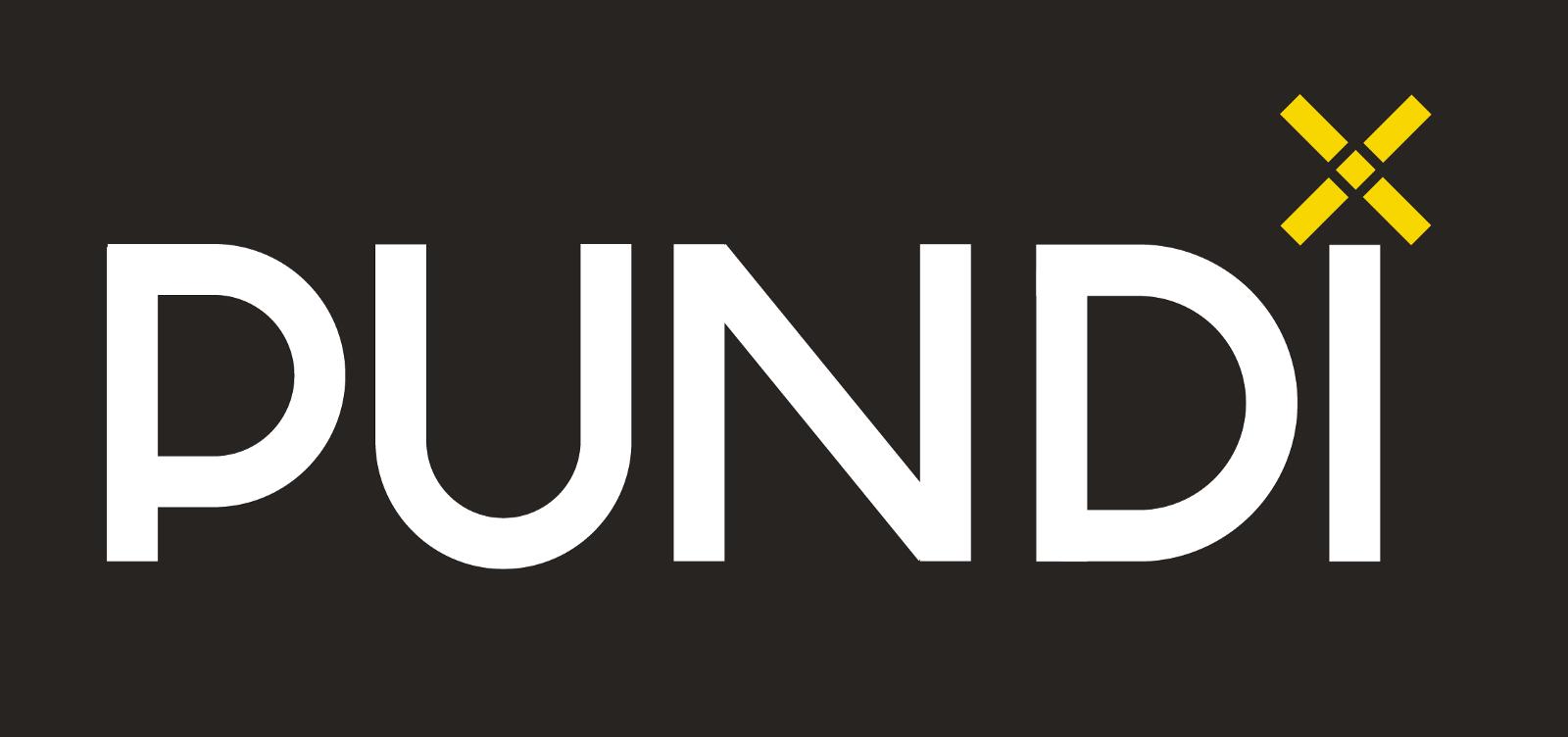 Проект Pundi X (NPXS)
