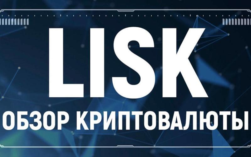 Обзор криптовалюты Lisk (LSK)