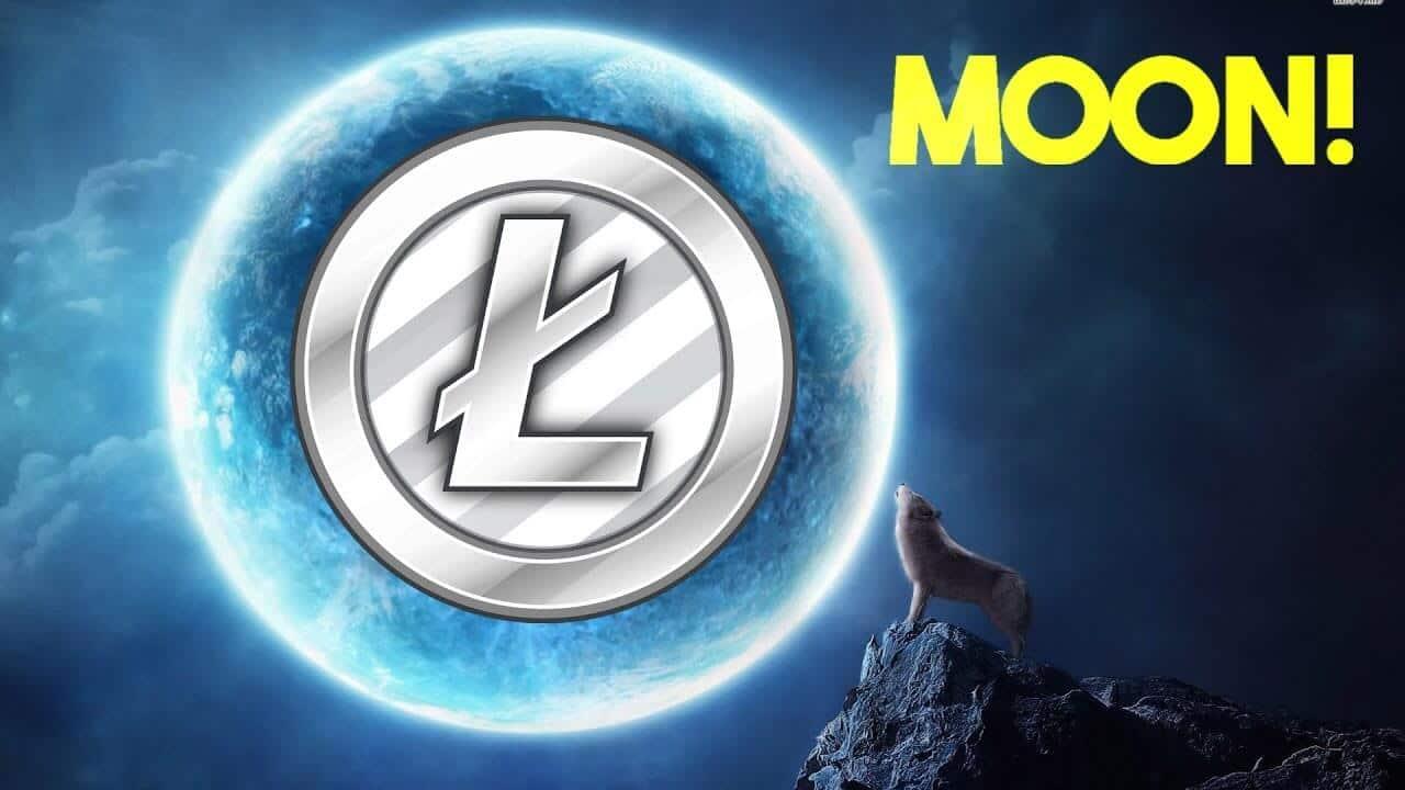 Обзор крана Moon Litecoin