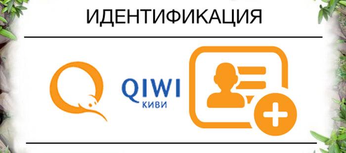 Инструкция по идентификации кошелька QIWI