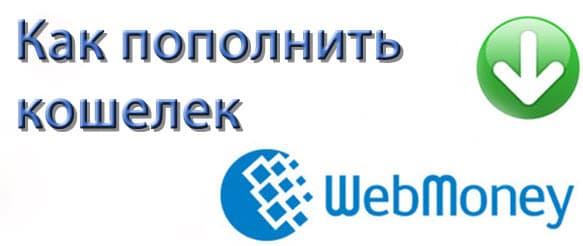 Как пополнить кошелек в системе ВебМани
