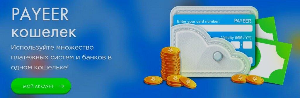 Система для хранения денег Payeer