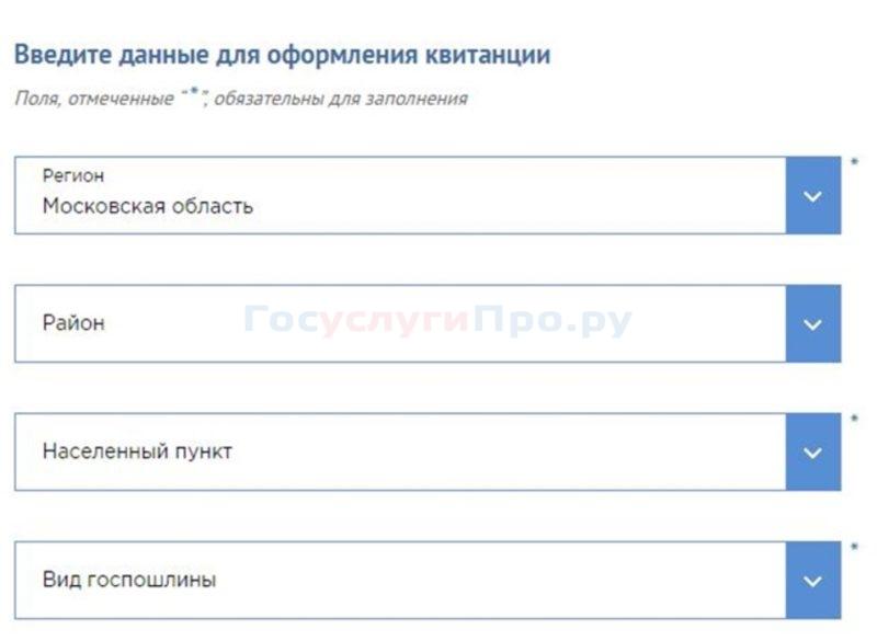 Оплата через сайт ГУВМ МВД, шаг 2
